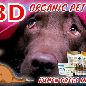Terrified Pet's & Great Treats for Thunder, Fireworks or Heavy Machinery | CBD Headquarters