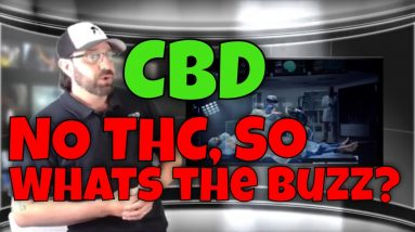 NO THC! So | CBD Headquarters