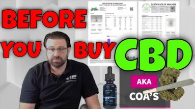 What you should know before buying CBD, Will CBD get you high?  | CBD Headquarters